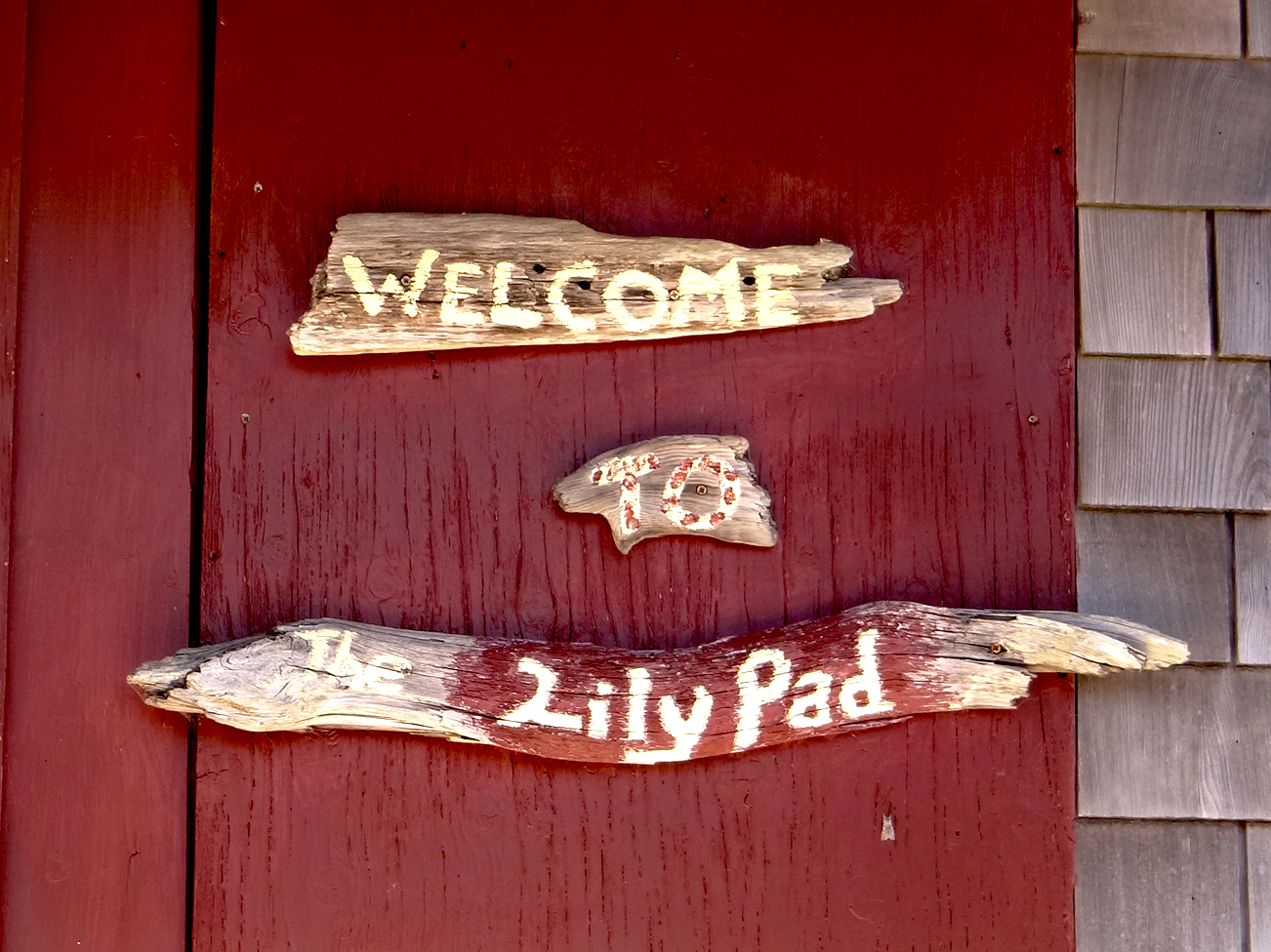 Lily Pad Welcome