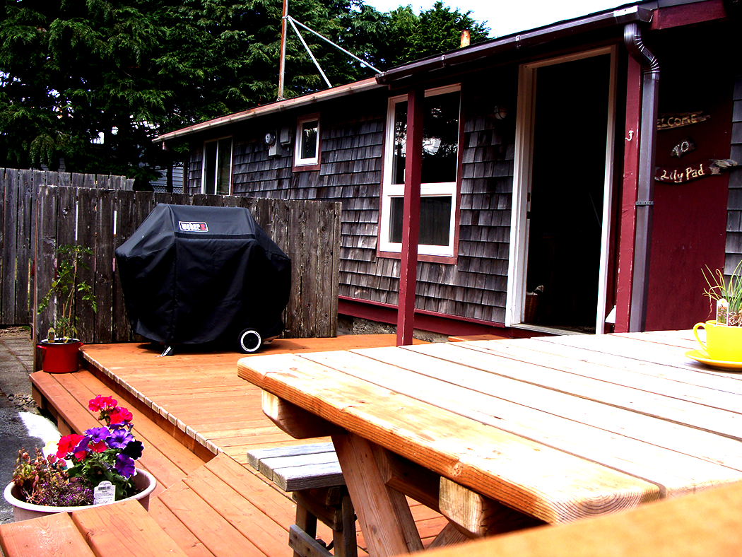 Lily Pad Deck, table and BBQ