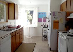 Elk Meadows Kitchen 2