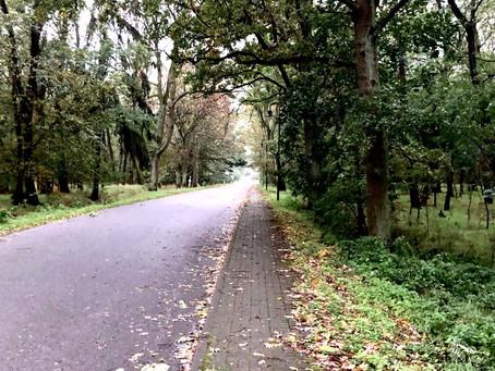 Megint ősz