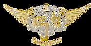NJE Logo (1).png