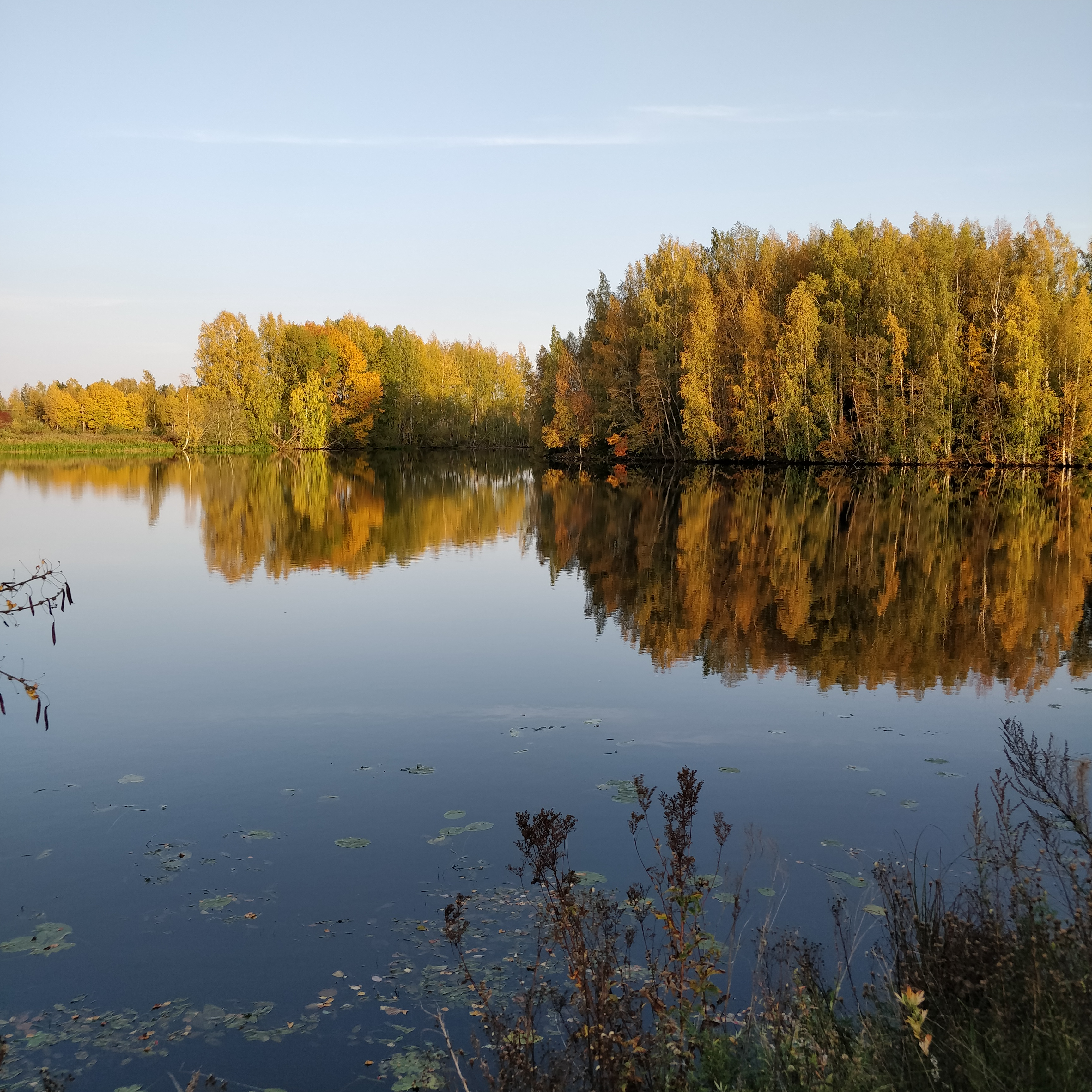 Kokemäenjoen maisemaa