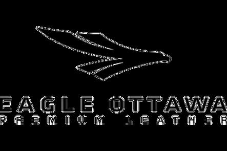 eagle otawa.png