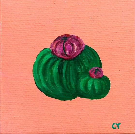 Tiny Cactus 3