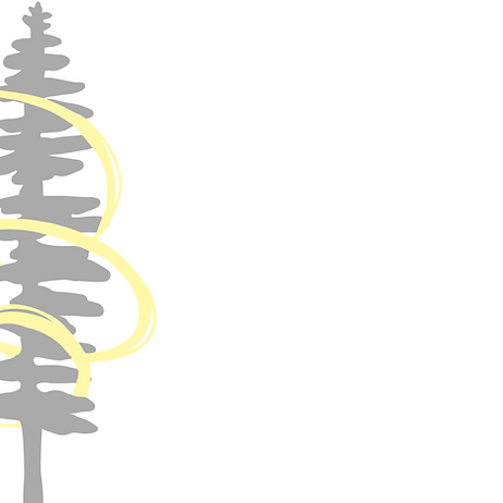 We chose the Sitka spruce as a represent