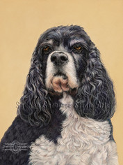 """Colored pencil drawing of """"Hanna"""""""