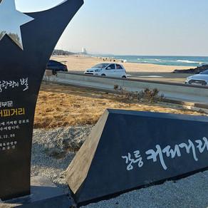 ดื่มด่ำวิวทะเลไปกับถนนสายกาแฟ ที่คังนึง (The Coffee Street and Beaches of Gangneung)