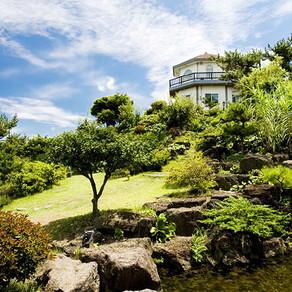 สวนสมุนไพร ดงซาน เชจู (Jeju Herb Dongsan(Herb garden))