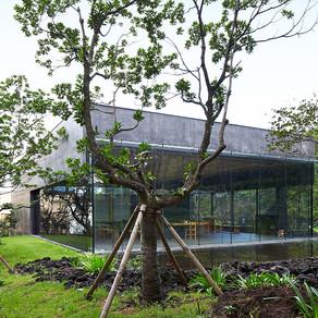 พิพิธภัณฑ์ชา โอซอลลก และ อินนิสฟรี เชจู เฮ้าส์ (Osulloc Tea Museum & Innisfree Jeju House)