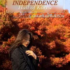 เรียนรู้ประวัติศาสตร์ พร้อมชมใบไม้เปลี่ยนสีที่ The Independence Hall of Korea