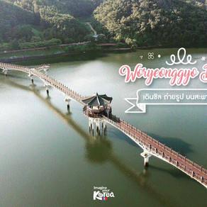 เดินชิลๆ ถ่ายรูปเล่น บนสะพานวอรยองกโย (Woryeonggyo)