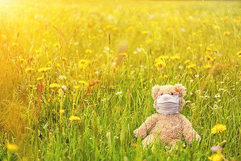 meadow-5148410_1920.jpg