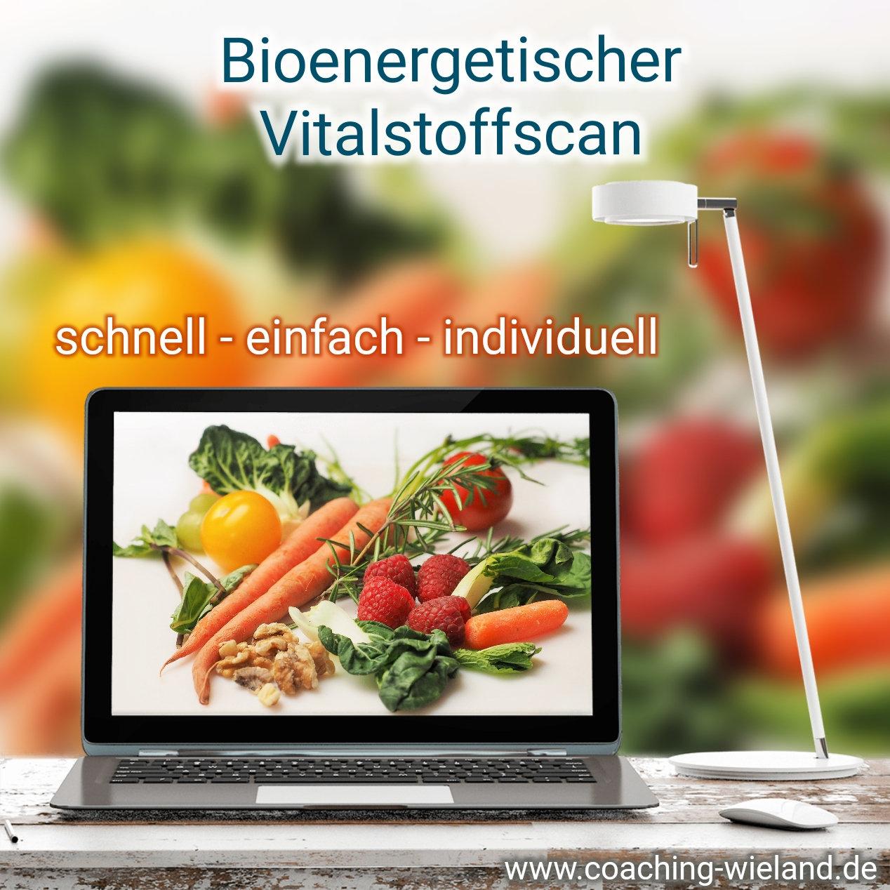 Bioenergetischer Vitalstoffscan