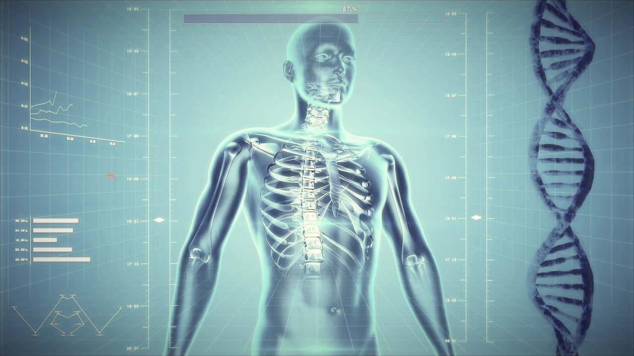 NES-Health Körperfeldscan