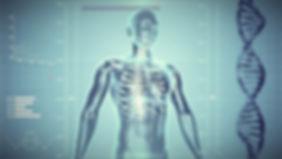 human-skeleton-163715_1280_edited_edited.jpg