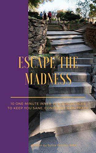 EscapetheMadness_BookCover.jpg