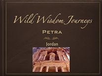 Petra Playbook Cover.jpeg