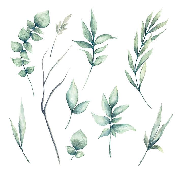 Painted Leaves.jpg