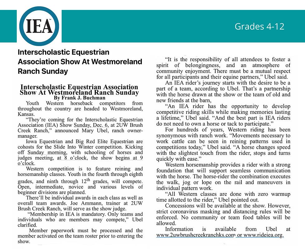 IEA article.png