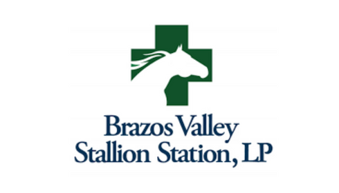 PROFESSIONAL EQUINE FACILITY (7).png