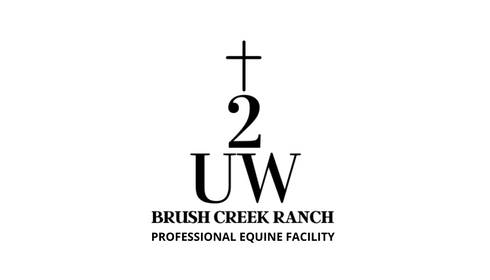 PROFESSIONAL EQUINE FACILITY (1).png