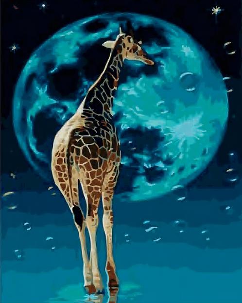 Giraffe in the Moonlight - 2.5/5 Complexity
