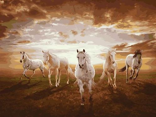 Five Horses - 4.5/5 Complexity