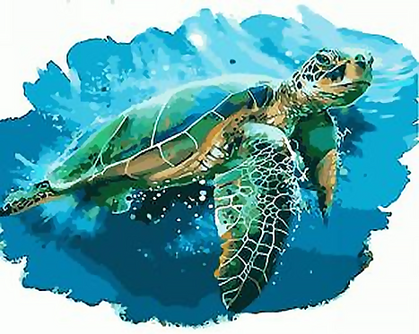 Watercolour Turtle - 3.5/5 Complexity