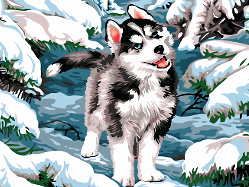 Husky Puppy in the Snow - 3/5 Complexity