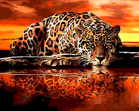 Leopard Drinking from Lake - 4/5 Complexity