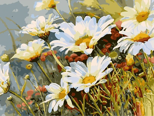 Daisy Flowers - 3/5 Complexity