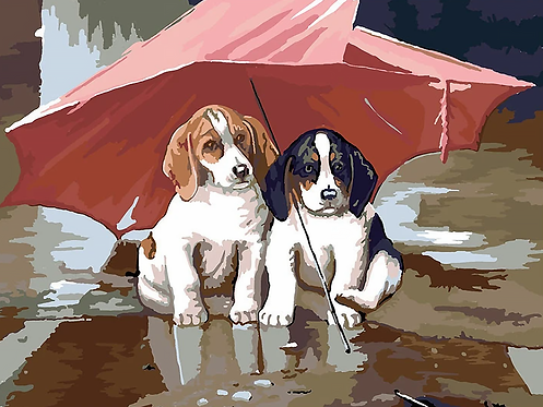 Cute Dogs Under Umbrella - 3/5 Complexity