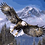 Thumbnail: Flying Eagle with Mountains - 3.5/5 Complexity