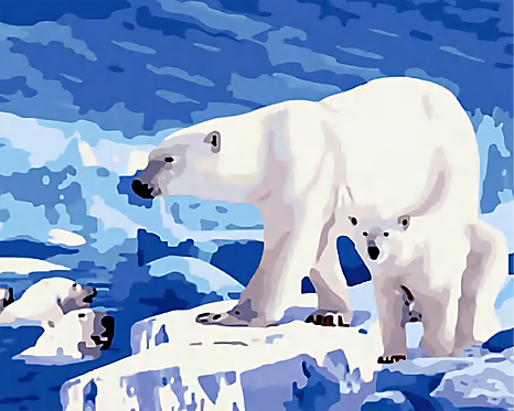 Polar Bears in the Arctic -1/5 Complexity