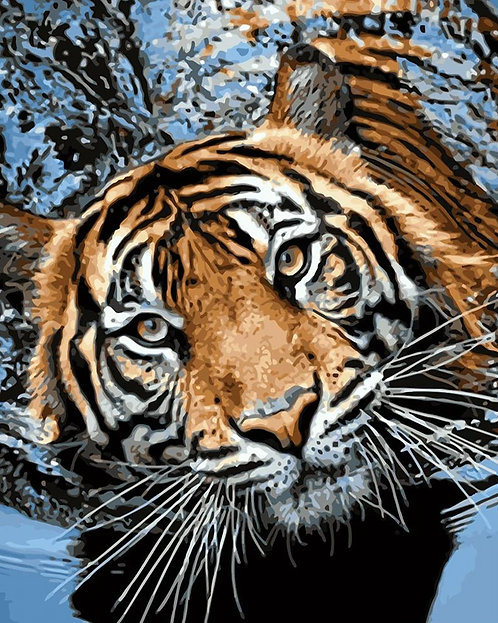 Swimming Tiger - 4.5/5 Complexity