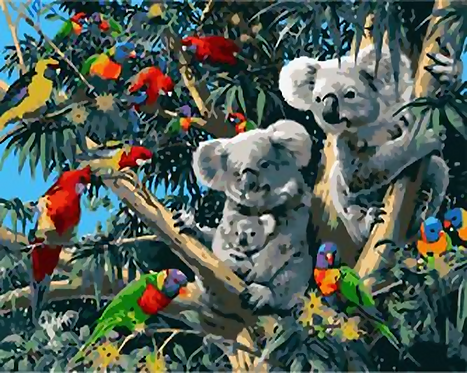 Australian Birds and Koalas - 5/5 Complexity