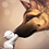 Thumbnail: Cute Kitten Kissing Dog - 1.5/5 Complexity