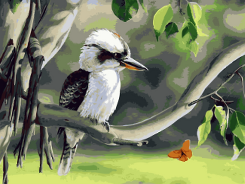 Australian Kookaburra Bird - 4.5/5 Complexity