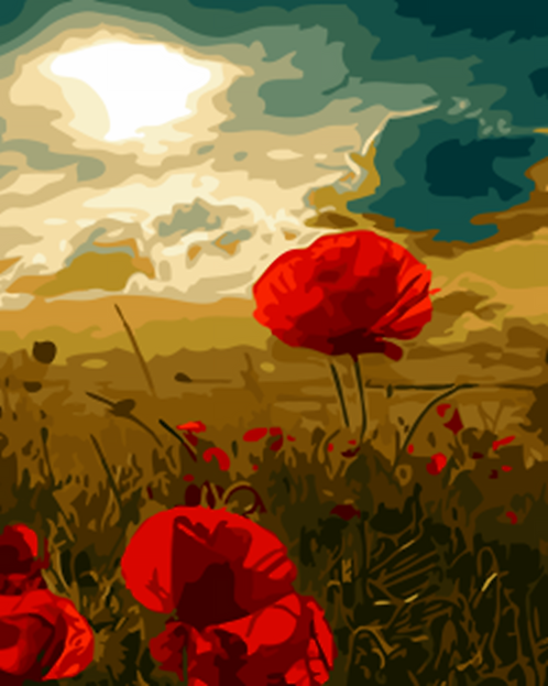 Poppy Field - 2/5 Complexity