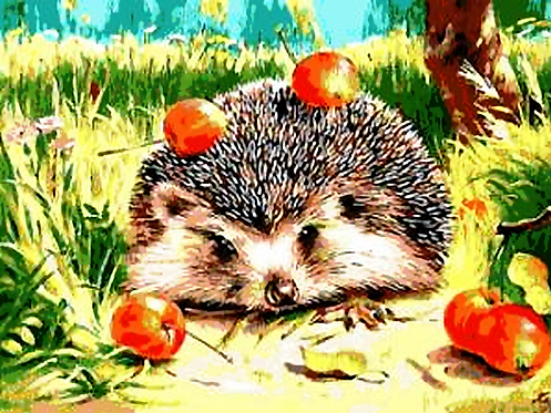 Cute Hedgehog with Apples - 5/5 Complexity
