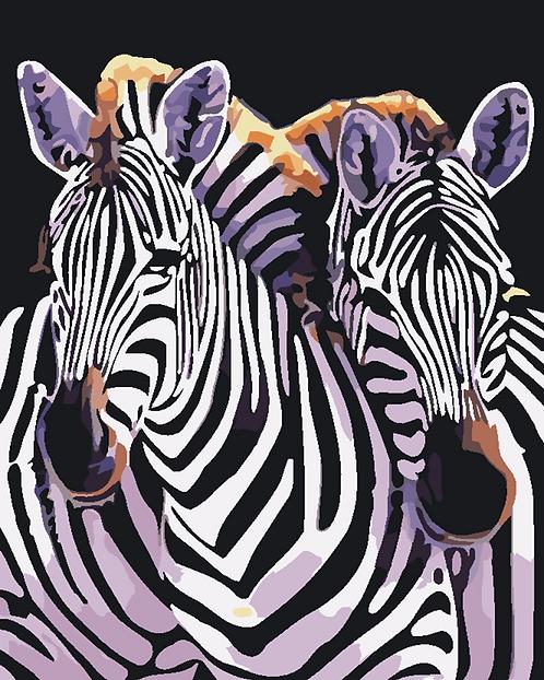 Zebra Couple - 1.5/5 Complexity