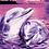 Thumbnail: Dolphin Couple - 2/5 Complexity