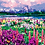 Thumbnail: Flowers with Mountain Landscape - 5/5 Complexity