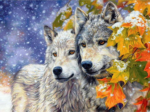 Wolf Couple in Snow - 4/5 Complexity
