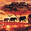 Thumbnail: Five Elephants Walking in Savannah Sunset - 3.5/5 Complexity