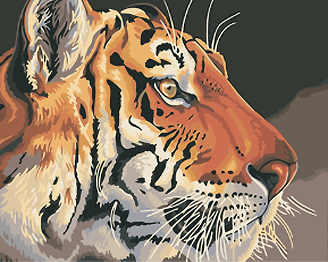 Majestic Tiger Face - 3/5 Complexity