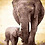 Thumbnail: Mother and Baby Elephant - 4/5 Complexity