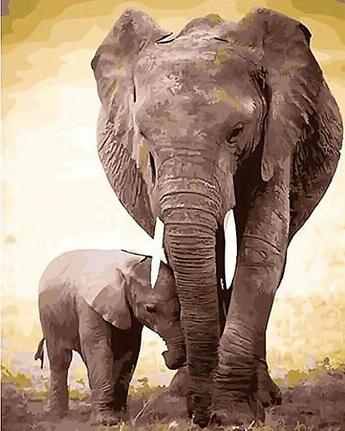 Mother and Baby Elephant - 4/5 Complexity
