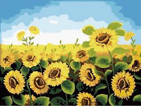 Sunflower Field - 3.5/5 Complexity