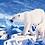 Thumbnail: Polar Bears in the Arctic - 1/5 Complexity